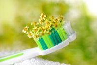 Igiene Orale Naturale